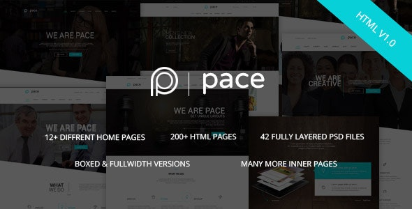 Pace v1.0 - Responsive MultiPurpose HTML5 Template preview image