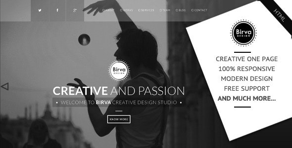 Birva Design v1.0 - Creative One Page Theme preview image